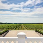 Long Island Vineyard Virtual Tours